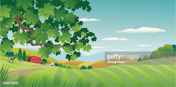 graphic image of sunny countryside - farm stock illustrations