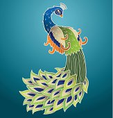 Graphic of colorful peacock with ornate tail feathers