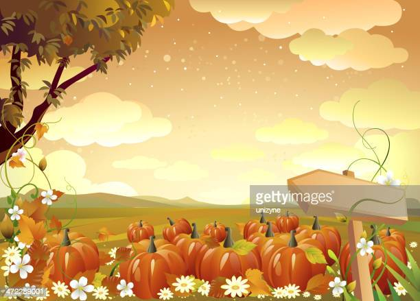 Graphic of pumpkins in field with trees and orange sky