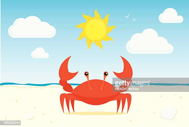 graphic of red crab on a sunny beach - crab stock illustrations