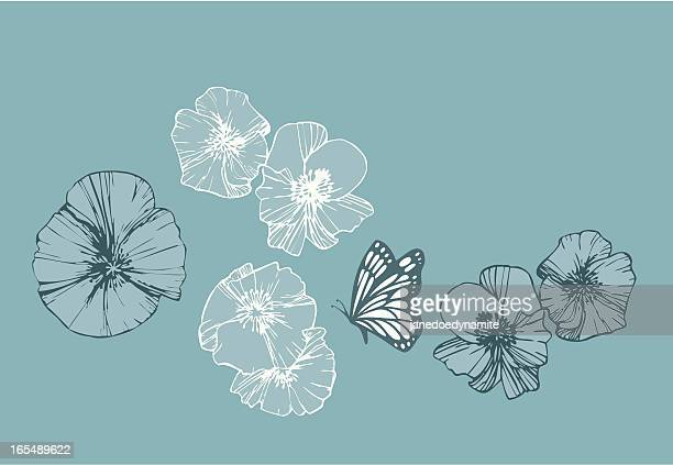 Graphic Poppies and Butterfly (vector)
