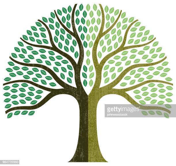 graphic small tree illustration - tree trunk stock illustrations, clip art, cartoons, & icons