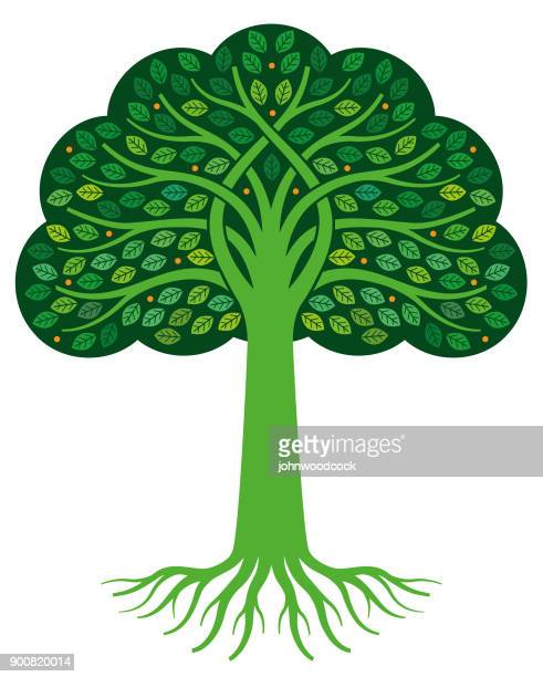 graphic tree with roots illustration - tree rings stock illustrations, clip art, cartoons, & icons