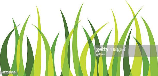 grass 4 - blade of grass stock illustrations