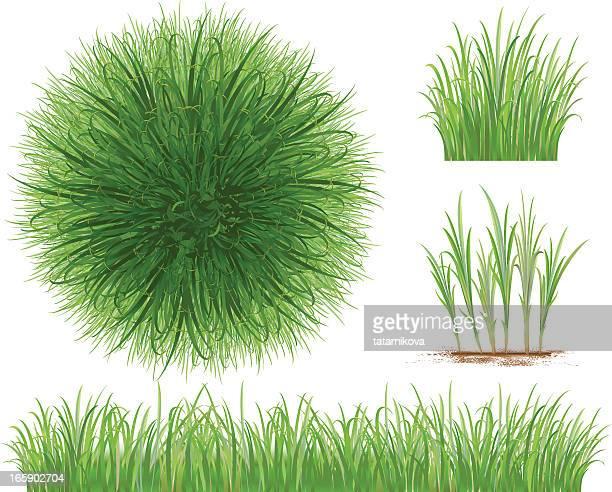60点の草の葉のイラスト素材クリップアート素材マンガ素材アイコン