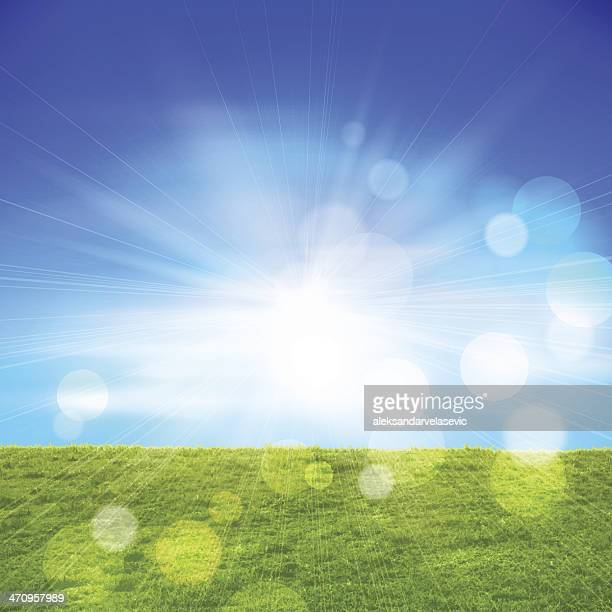Grass Field and Sky Background