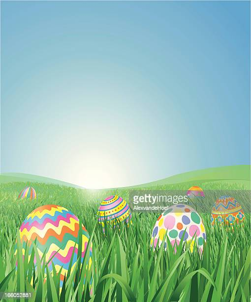 grass field with easter eggs - easter stock illustrations