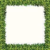 grass frame presentation