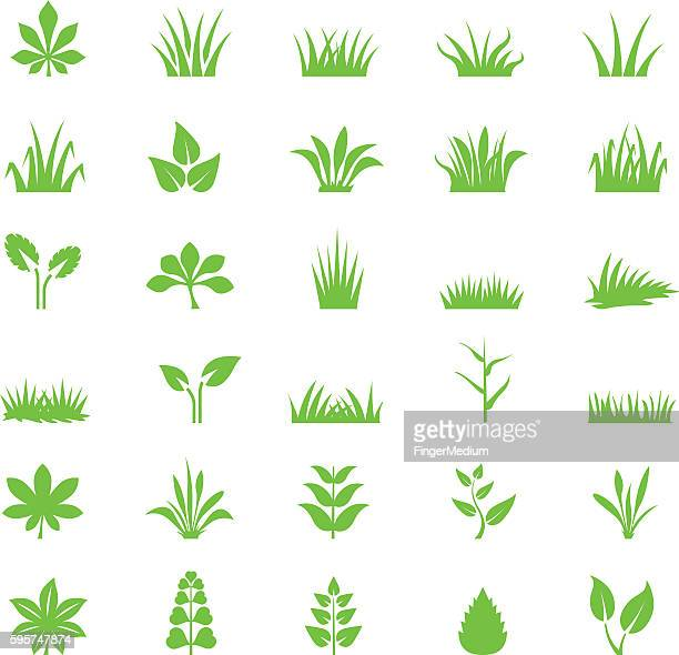 grass icon set - gras stock illustrations