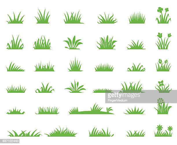 grass icons - grass stock illustrations