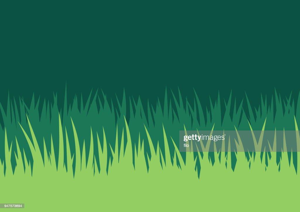 Grass Lawn Background : stock illustration