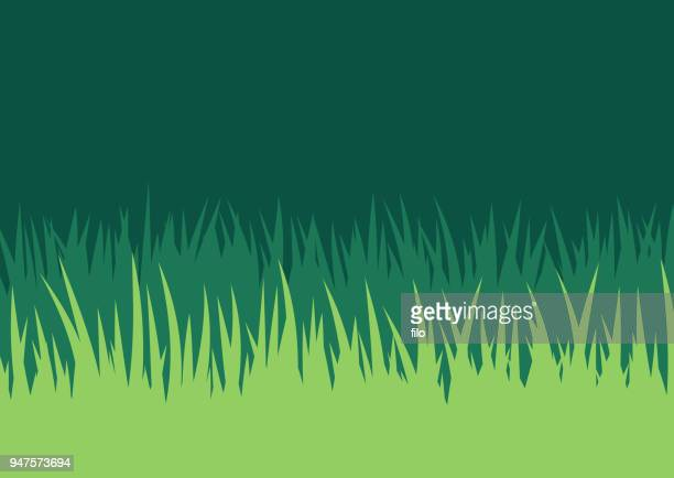 grass lawn background - prairie stock illustrations, clip art, cartoons, & icons