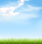Grass lawn with clouds on blue sky