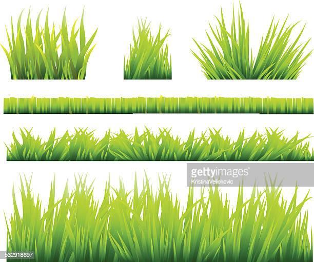 Grass sets
