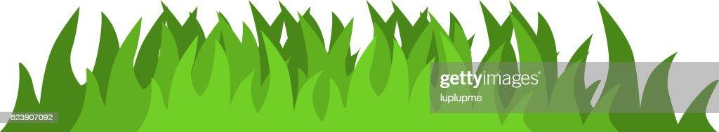 Grass vector illustration.