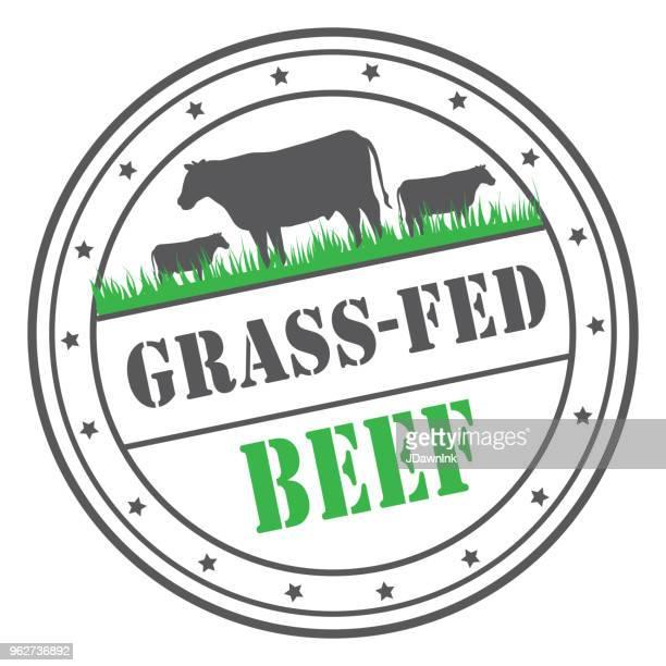 ilustraciones, imágenes clip art, dibujos animados e iconos de stock de plantilla de diseño de la etiqueta o el sello de carne de res alimentada con pasto - carne de vaca