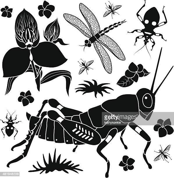 grasshopper and tropical plants - assassin bug stock illustrations, clip art, cartoons, & icons
