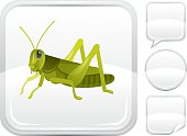 Grasshopper icon on silver button