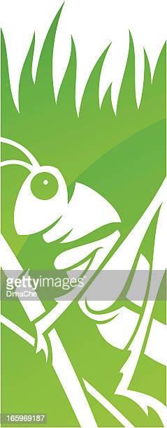 illustrations, cliparts, dessins animés et icônes de sauterelle symbole - cigale