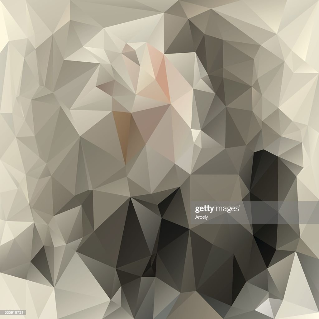 gray beige polygonal triangular pattern background : Vector Art