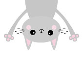 Gray funny cat Head silhouette hanging upside down. Eyes, hands. Baby kitten. Cute cartoon character Baby collection. Kawaii pet animal. Flat design White background.