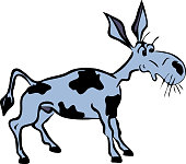 gray funny donkey with black spots