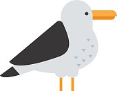 Great black-backed gull larus marinus sea wildlife animal and