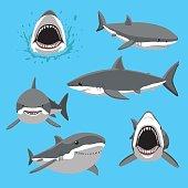 Great White Shark Six Poses Cartoon Vector Illustration