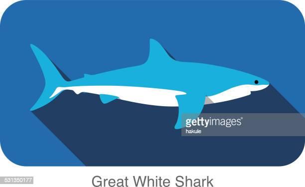 illustrations, cliparts, dessins animés et icônes de grand requin blanc natation écran plat 3d icon design - requin