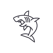 great white shark vector line icon, sign, illustration on background, editable strokes