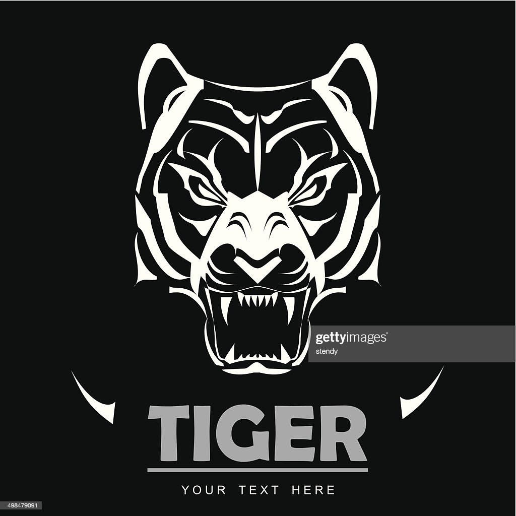great white tiger roaring vector art | getty images