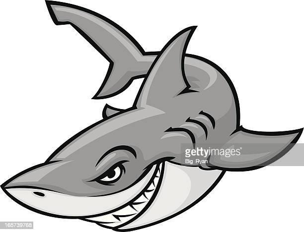 illustrations, cliparts, dessins animés et icônes de great blanc - requin