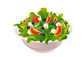 Greek salad vector illustration