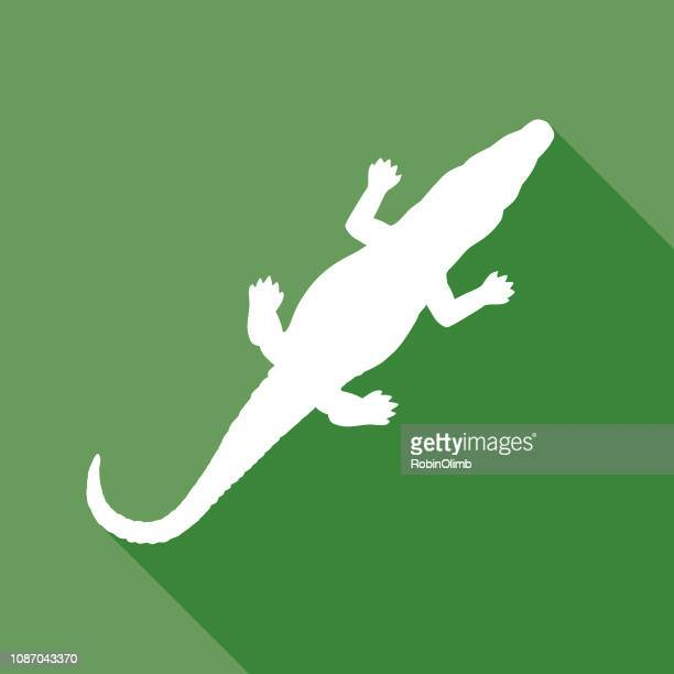 illustrations, cliparts, dessins animés et icônes de icône de l'alligator vert - crocodile