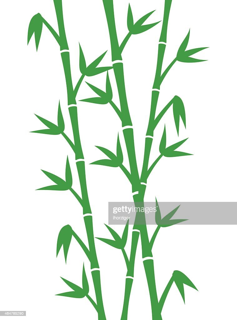 Green bamboo stems