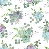Green colorful succulent Echeveria seamless vector design print