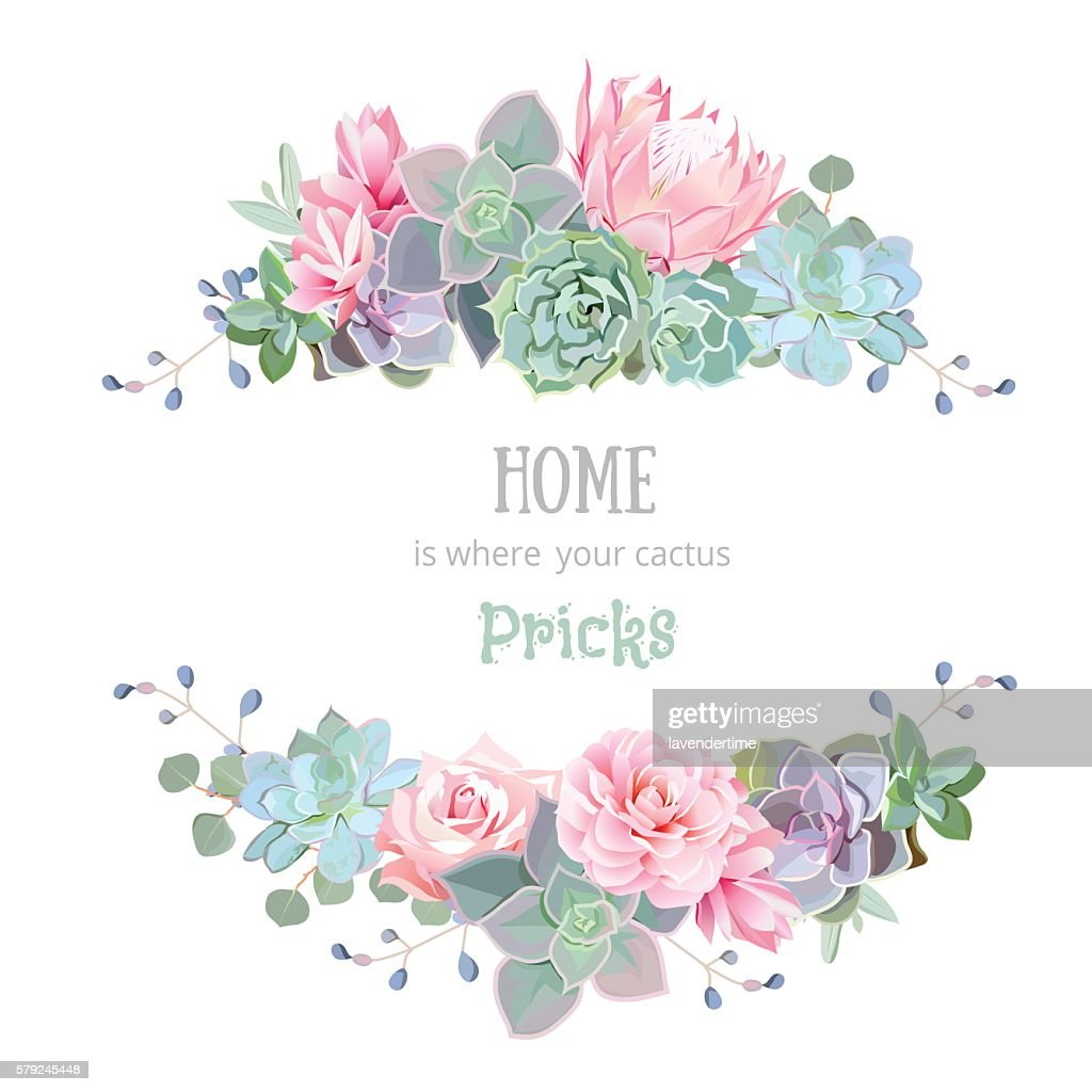 Green colorful succulents vector design round frame. Echeveria, protea, eucaliptus.