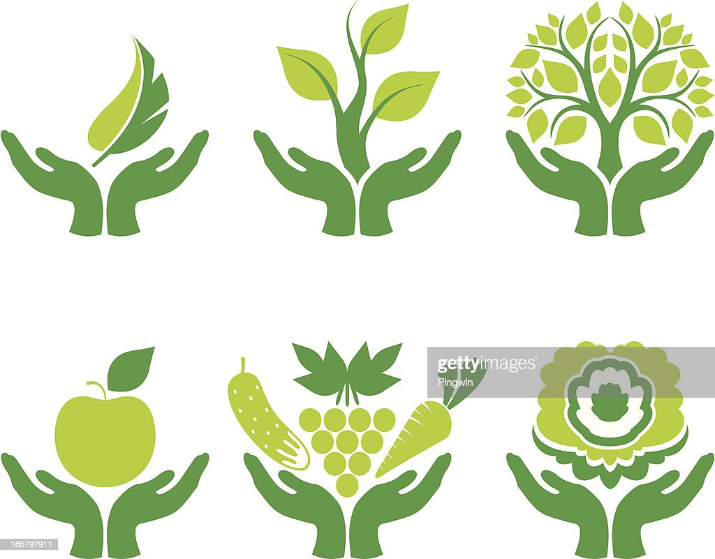 Green concept with hands holding nature elements