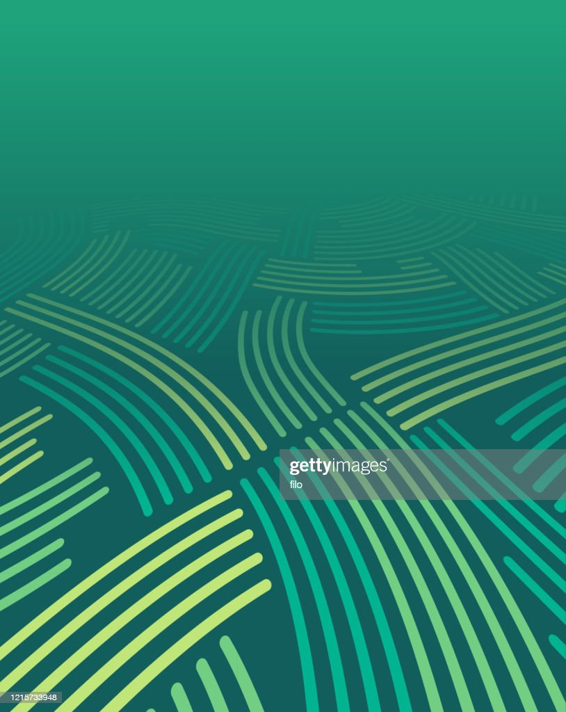 Green Farm Fields Abstract Background : stock illustration