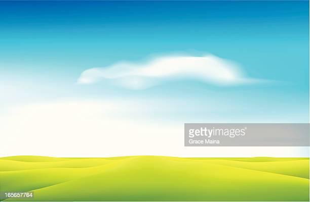 Green field - VECTOR