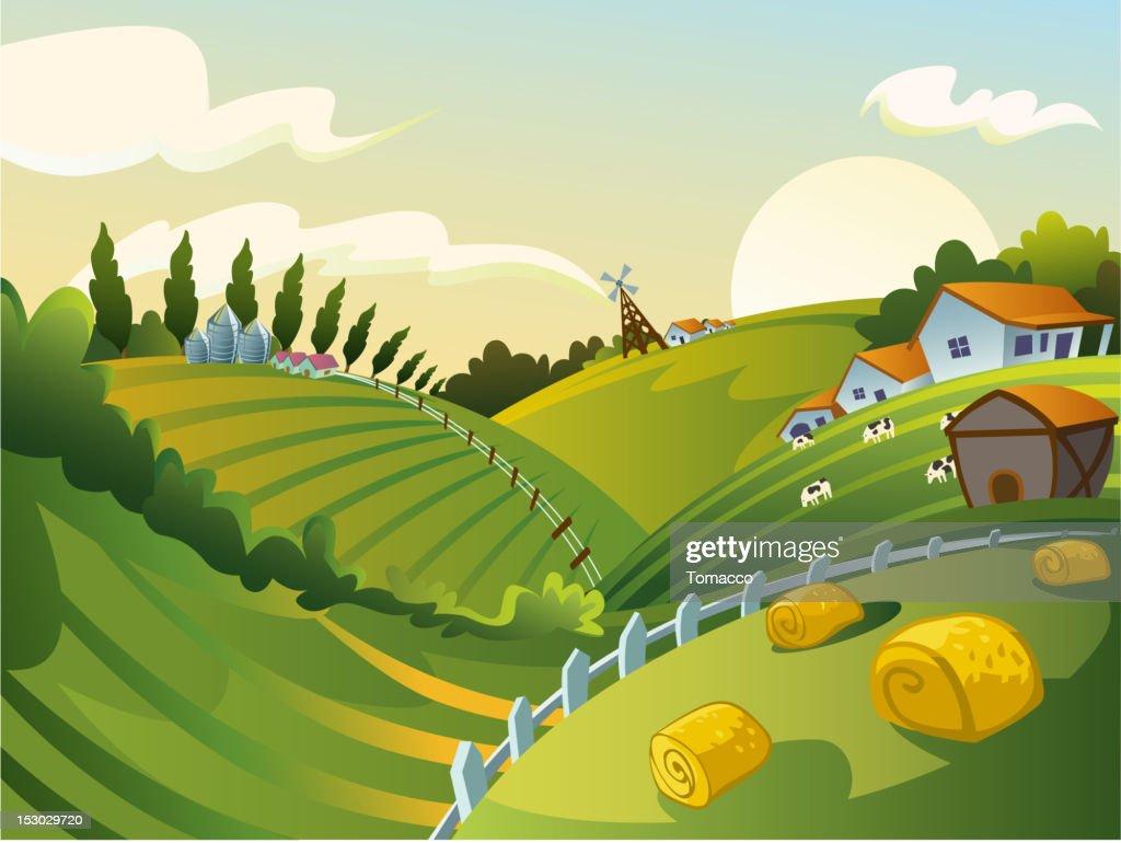 Green fields in a rural landscape