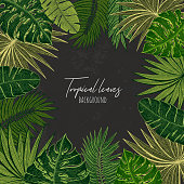 Green floral frame with tropical leaves. Botanical design template for wedding invitations, greeting cards, postcards, web design, social media, labels, packaging design, frame for quotes.