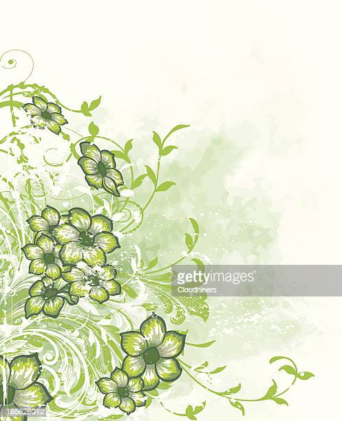green floral watercolor with scrollwork and flowers - desaturated stock illustrations, clip art, cartoons, & icons