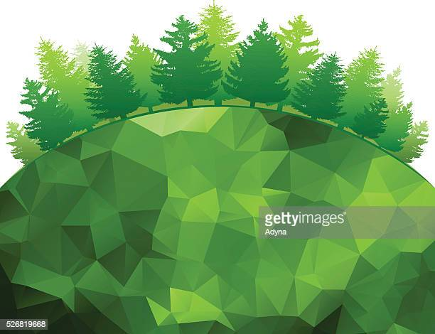 green forest - coniferous tree stock illustrations, clip art, cartoons, & icons