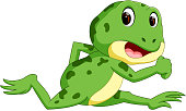 Green frog with happy smile