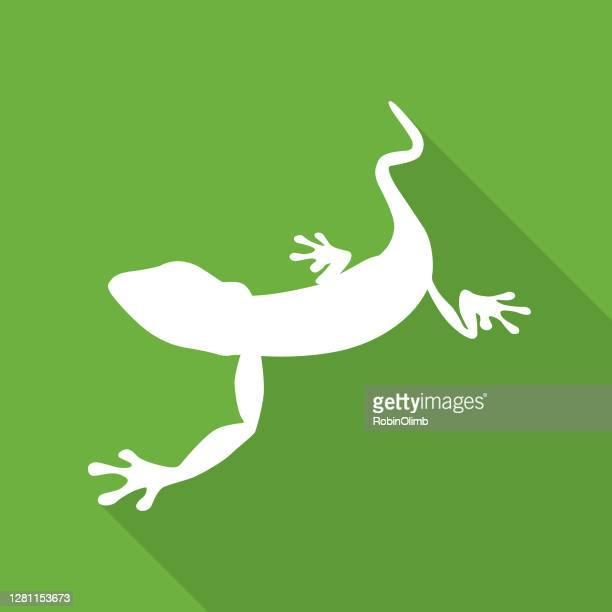 illustrazioni stock, clip art, cartoni animati e icone di tendenza di icona di geco verde - geco