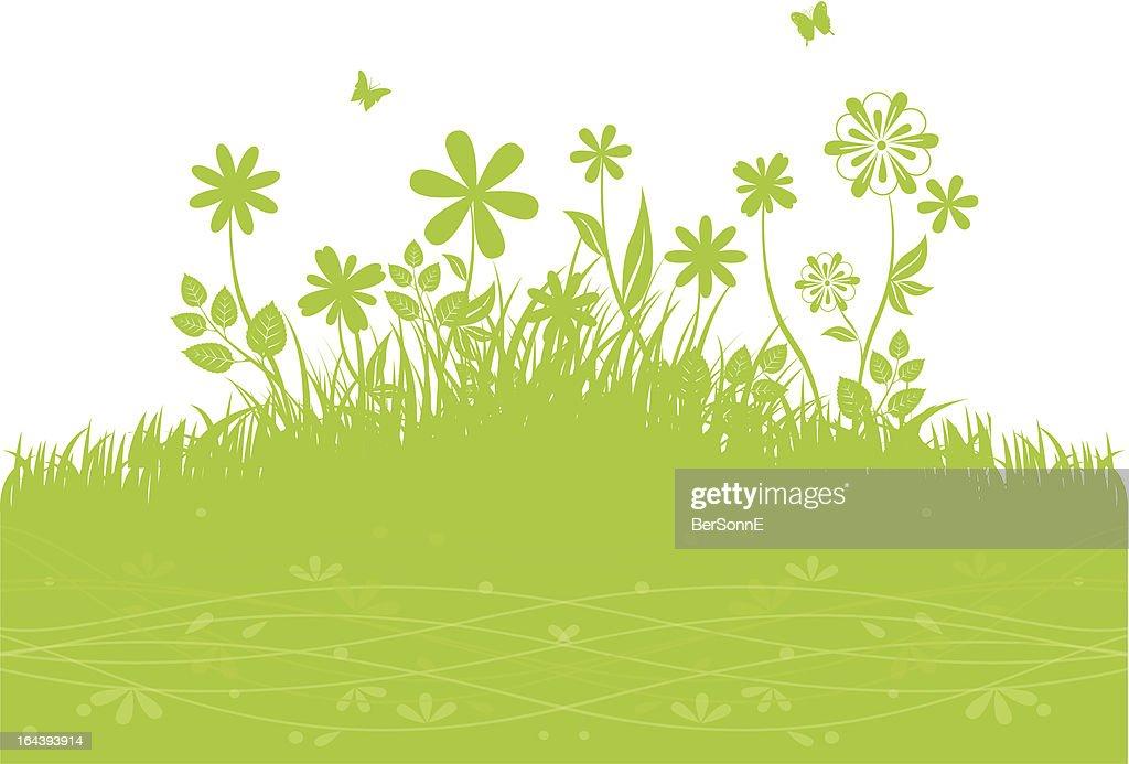 Green grass back