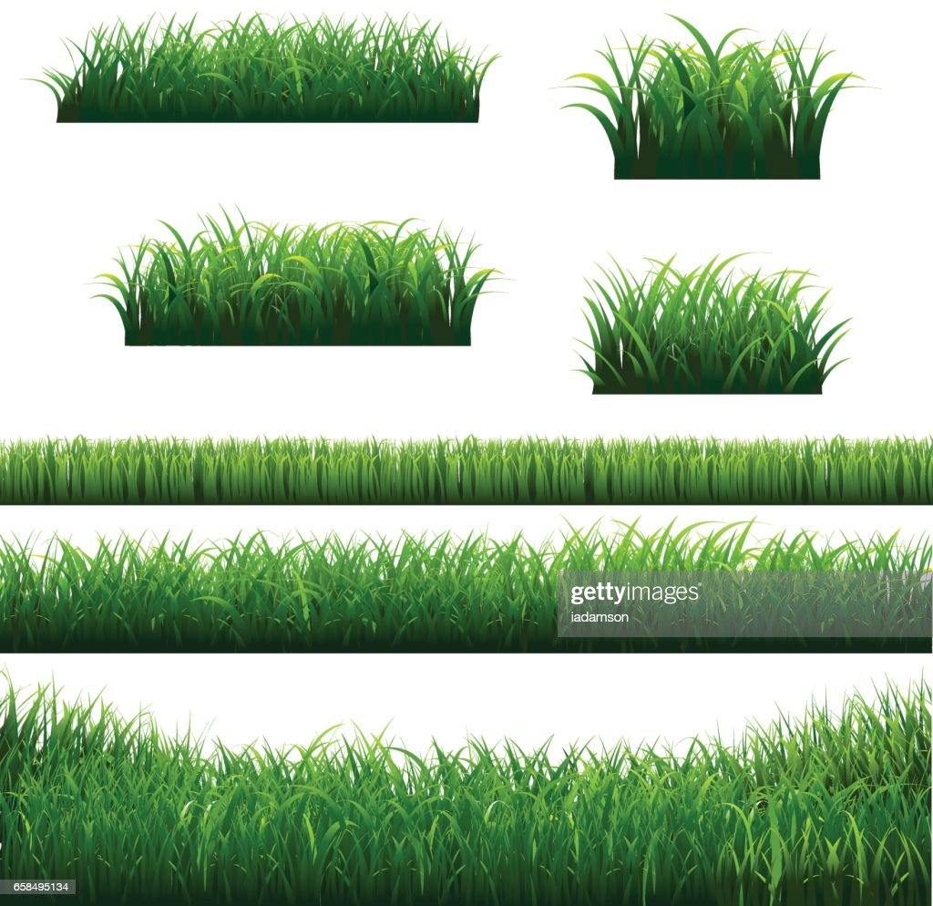 Green Grass Borders Big Collection