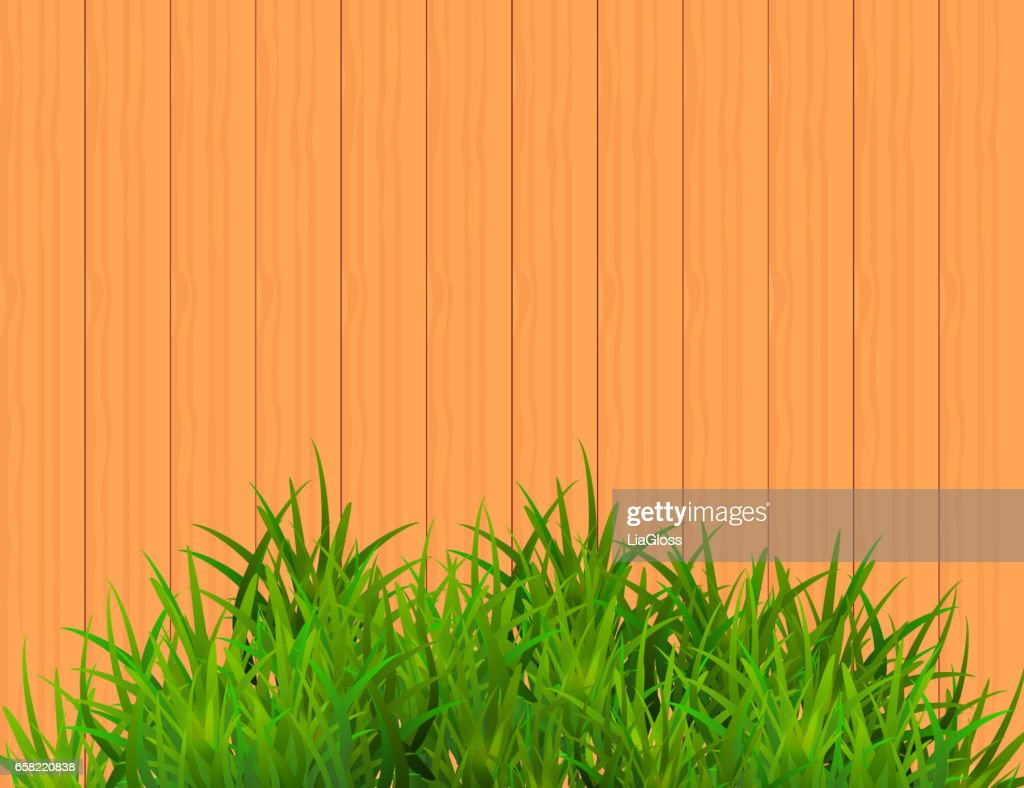 Green Grass Isolated on Brown Wooden  Background With Space for text.