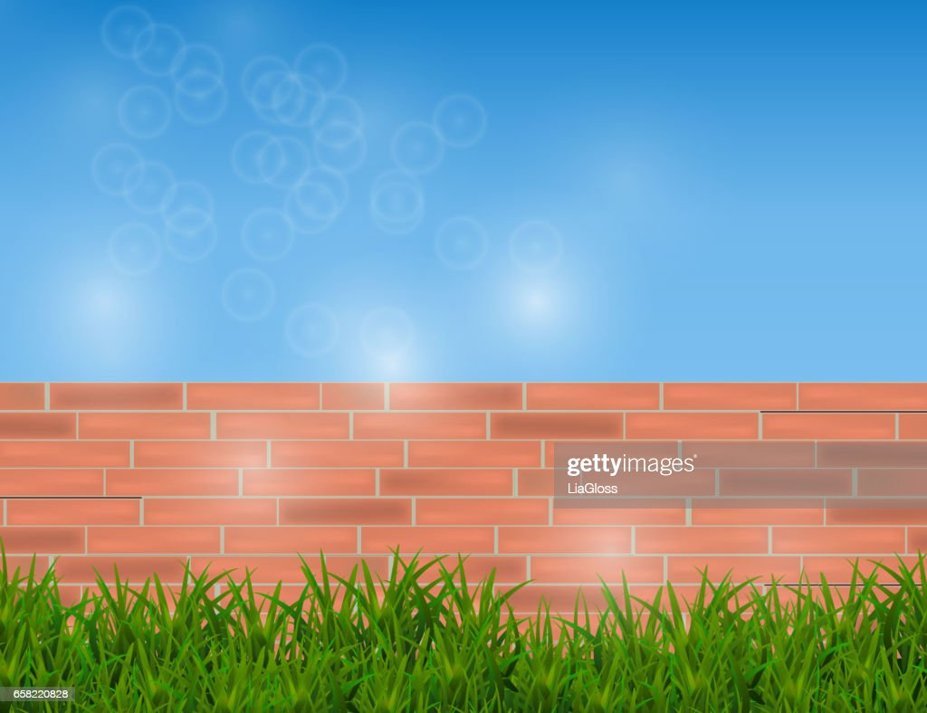 Green Grass Isolated on Red Brick Wall and Blue Sky.